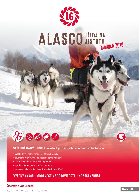 2019 CZ A4_Alasco