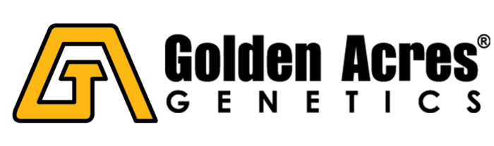 Golden-Acres-Logo-Color-WIDE-300dpi-1024x305